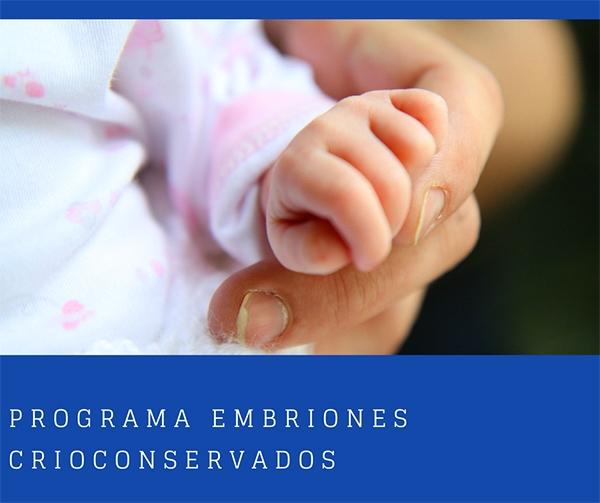 Materniodad subrogada programa básico